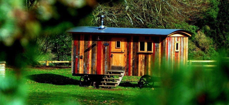 wood-3238640_1920